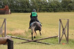 Keysoe_Nutkin jumping